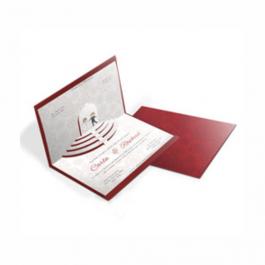 CONVITE ESPECIAL 04 Envelope Color Plus Estampado Pequim 180g - Lâmina Couchê 250g 210x310mm  Sem Verniz Corte e Vinco Padrão